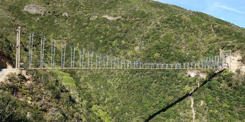 Makara Peak Mountain Bike Park Wild at Heart Bridge