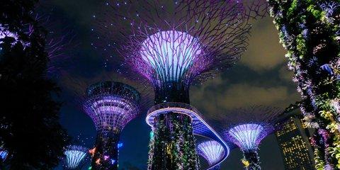 singapore-wwf.jpg